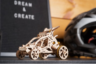Mini-buggy mechanical model kit
